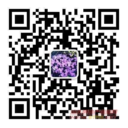 金涛庄紫轩花园